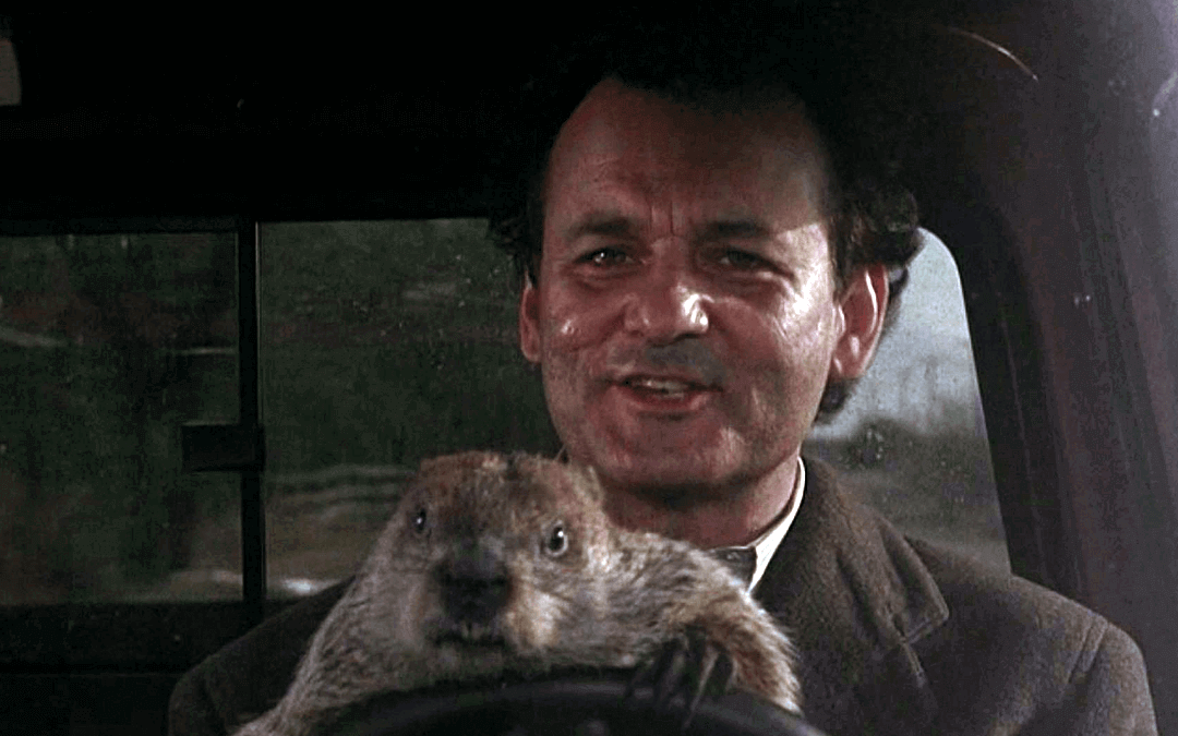 """How a """"Bill Murray"""" Type Character Can Inspire Your Writing"""